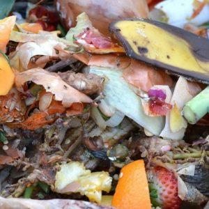 compost condominiale